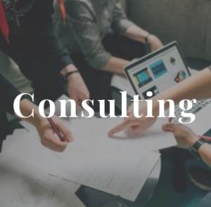 Meavox Consulting